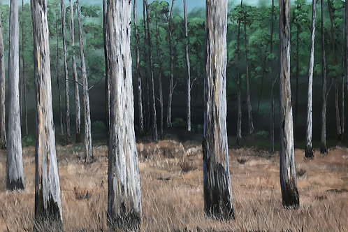 'Into the Bush'