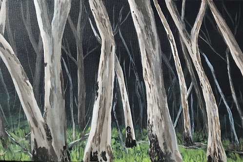 'Ghost Forest'
