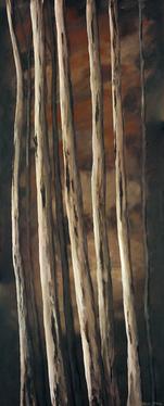 'Deep Dark Forest 3'
