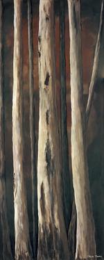 'Deep Dark Forest 1'