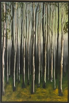 'Tall Trees'