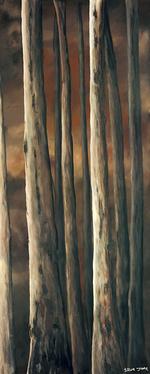 'Deep Dark Forest 2'
