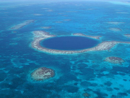 Second largest reef on Earth off 'danger list', following IUCN's advice