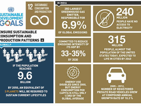 India's stance on SDG 12: Sustainable consumption and production