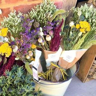 The Wallflower & Wallace dried flowers