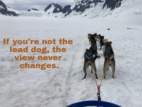 If you're not the lead dog, the view never changes.