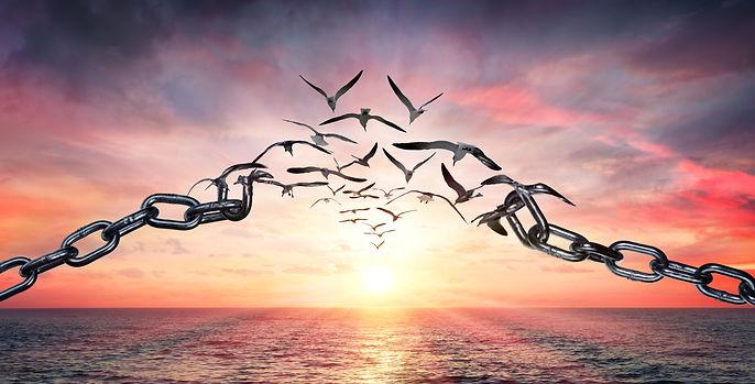 Wings_Chains smaller.jpg