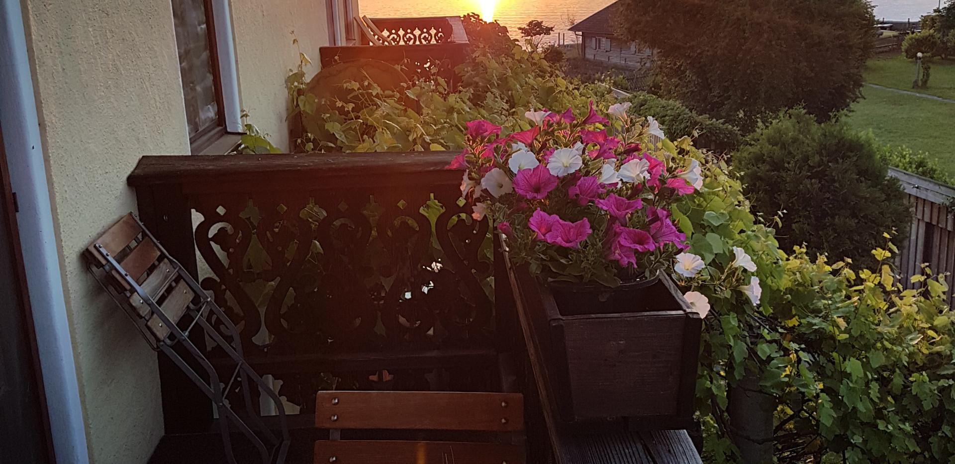 Sonnenaufgang vom Balko.jpg