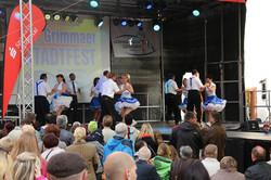 Stadfest Grimma 2015 (2)