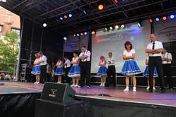 Stadfest Grimma 2015 (3)