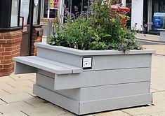 Chelsea Flower Show comes to Diss