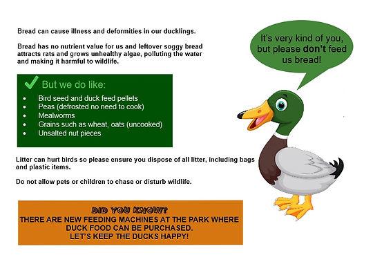 please do not feed ducks bread NEW sign.jpg