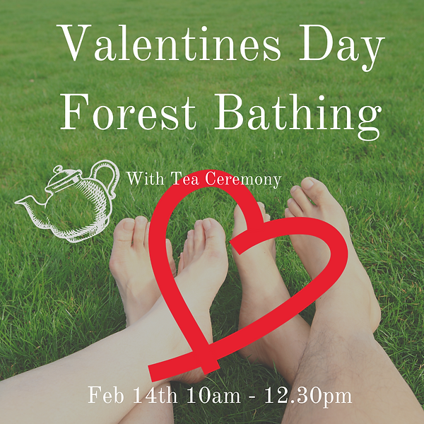 Valentines Day Forest Bathing.png