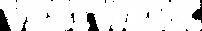 VES_logo_WHITE600.png