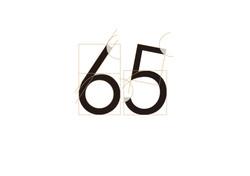 65设计-01