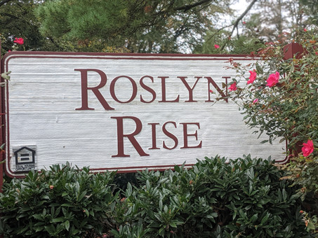 Rosyln Rise- A Deep Dive into the Proposed Redevelopment in Wilde Lake