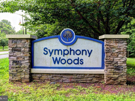 Three Questions for Columbia Council Candidates on the Future of Symphony Woods