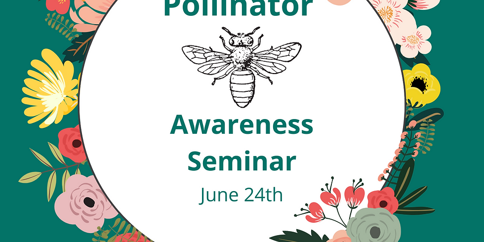Summer Service: Pollinators
