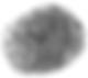 Fingerprint 3.png