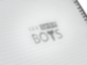 Sex Shop Boys