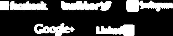 social-logo-1.png