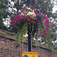 Warwick-in-Bloom-Lamp-post-baskets.jpg