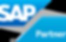 SAP_Partner_grad_R.png
