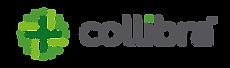 collibra-logo.png