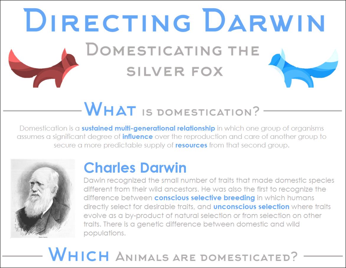 Directing Darwin