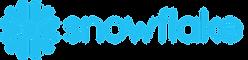 Snowflake Logo (1).png