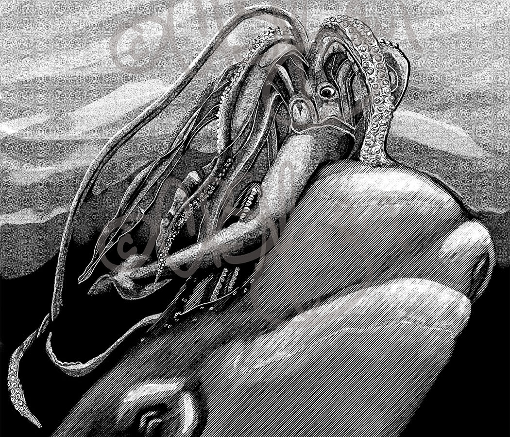 Giant Squid and Sperm Whale