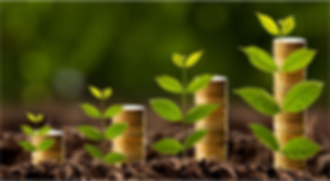 sustentabilidade - miniatura.png