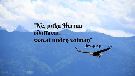 Raamatunlauseet kotka.png