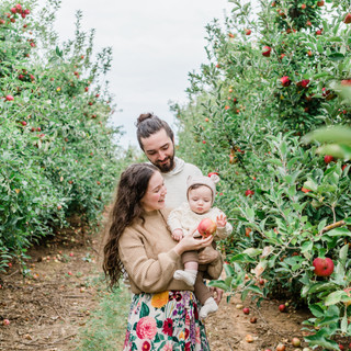 Monnier Apple Picking Family Session
