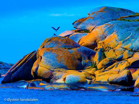 Rocks by the Seaside 02
