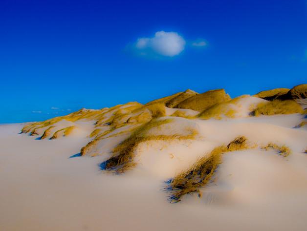 Landscape 5 Dunes