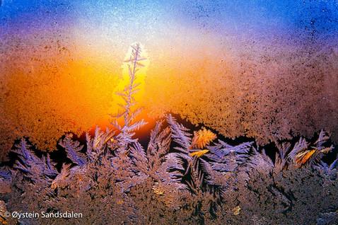 Frost Pattern 4