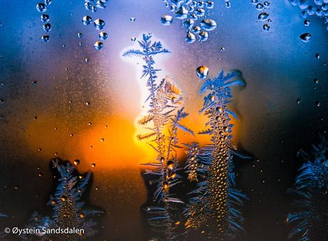 Frost Pattern 2