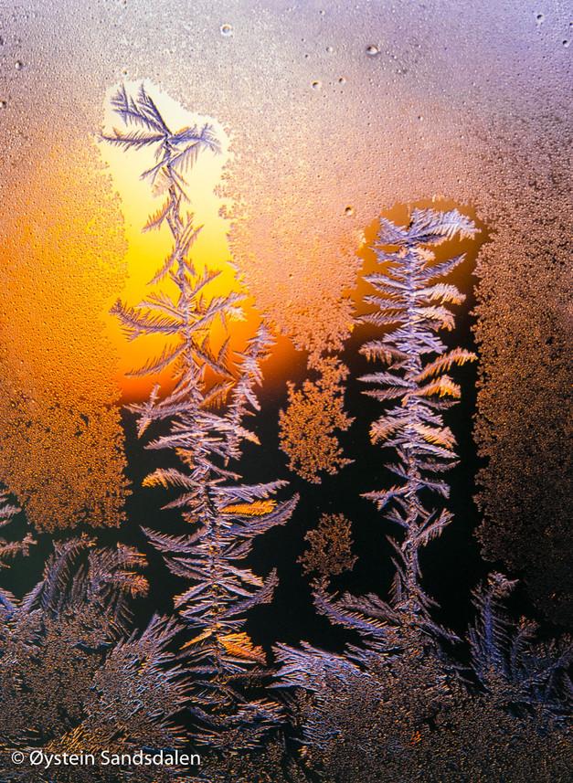 Frost Pattern 3