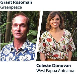 Mailchimp 4 Rainforest.jpg
