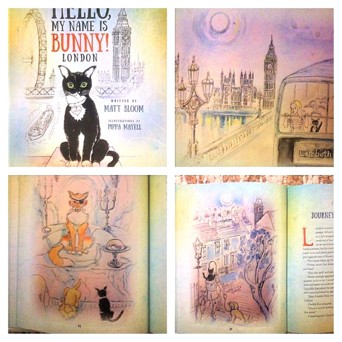 Illustrations for 'Hello! My Name is Bunny, London'