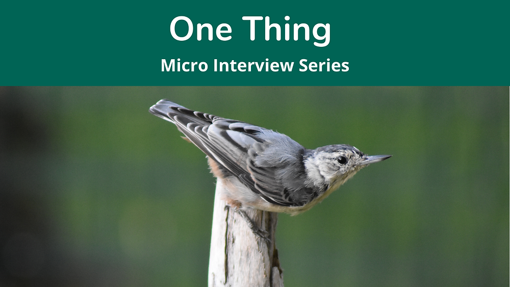 One Thing Micro Interview Series