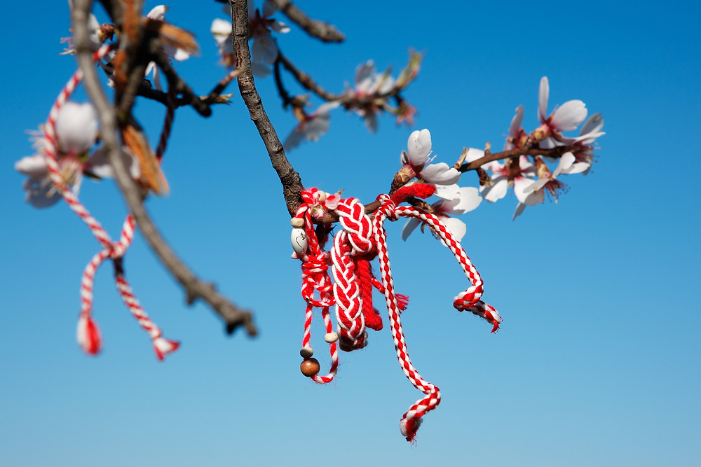 Red and White String tied to a apple blossom