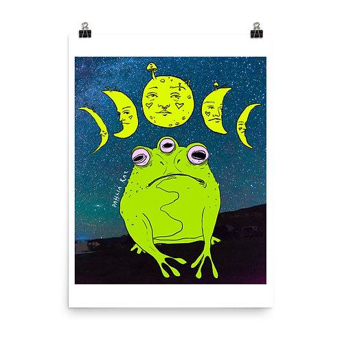 Phases of the Mushroom Moon and Frog