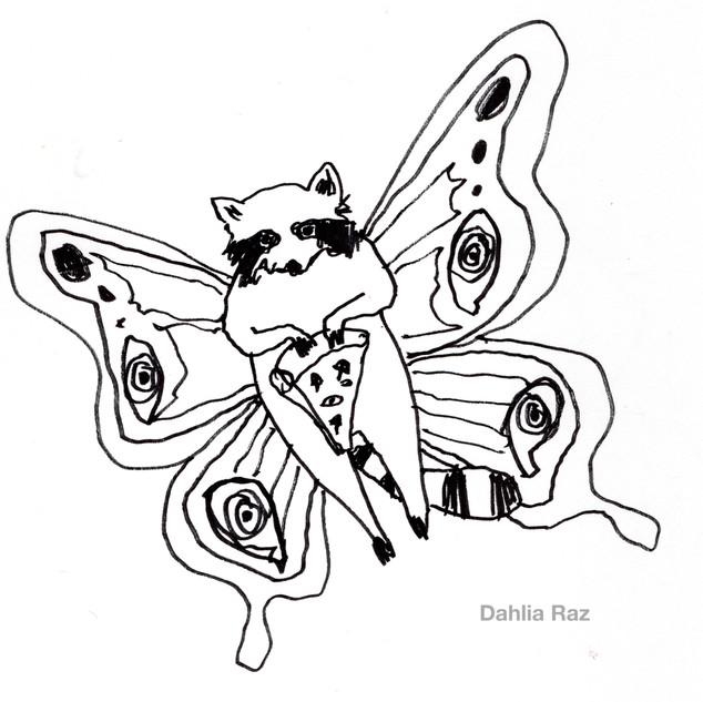 Raccoon Butterfly + Pizza