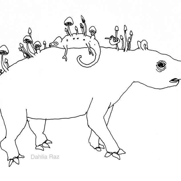 Tapir and Chameleon