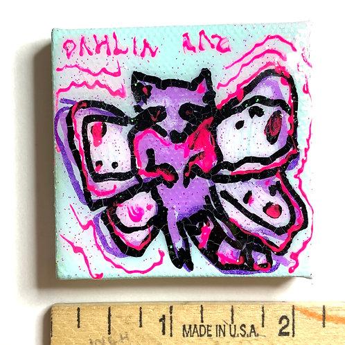Butterfly Raccoonn