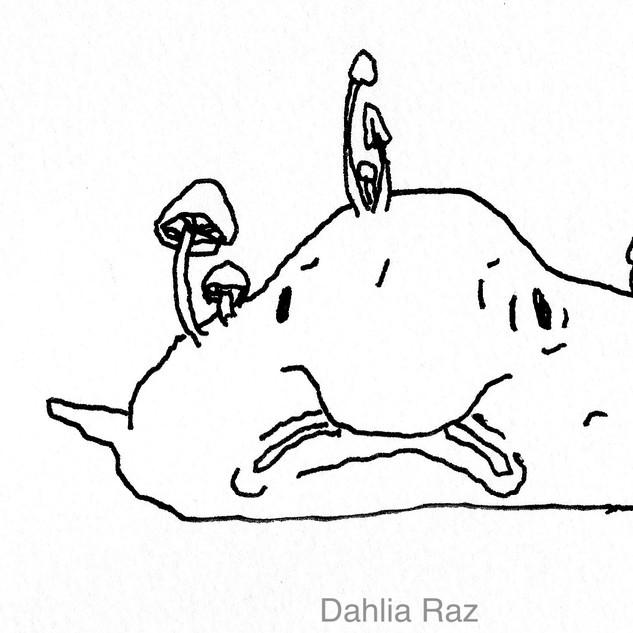 Blob Fish 2