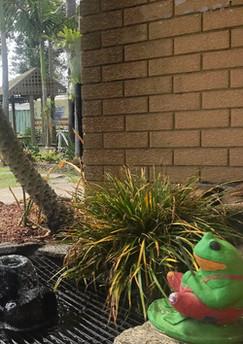 Frog Fountain Garden