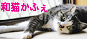 和猫カフェバナー.jpg